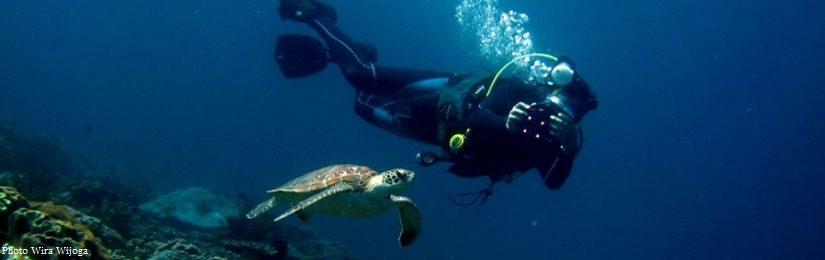 First scuba diving in Bali