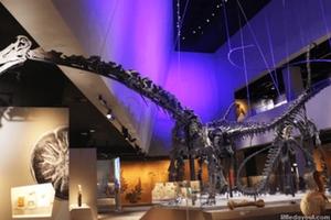 Muziejai Singapūre