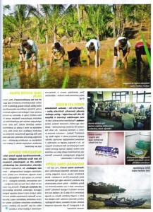 Articles about indonesia, Panele magazine (5)