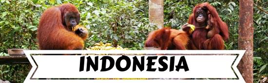 Destinations Indonesia